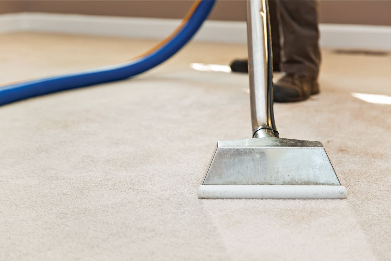 How Much Does Carpet Cleaning Cost? | Angi [Angie's List]