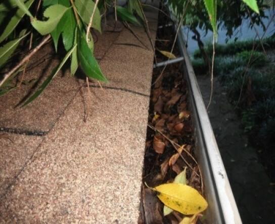 leaf-filled gutter on house