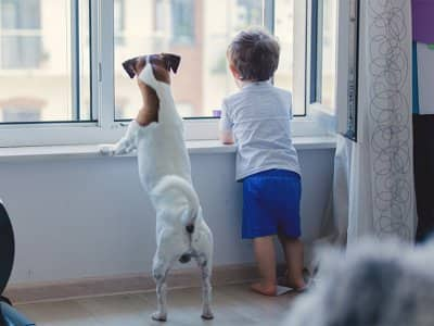 Boy and dog standing in front of window