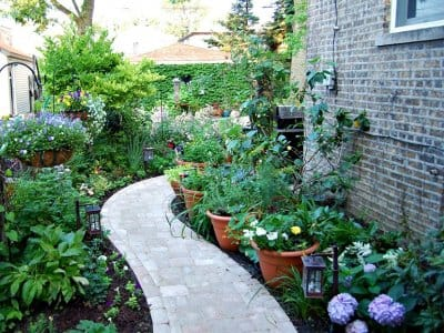 paved walkway in a small yard