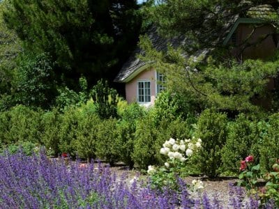 a small cottage surrounded by plants and lavendar