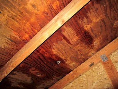 water damaged plywood in attic from roofing