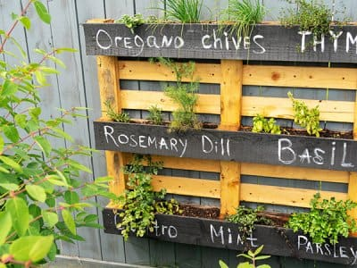 Pallet garden hung on fence