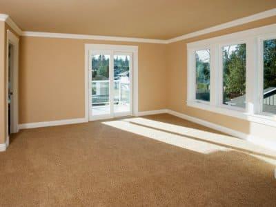 Orange carpet empty living room