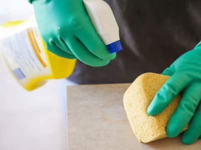 gloved hands holding a sponge and spray bottle