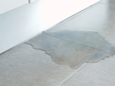 Puddle of water in kitchen