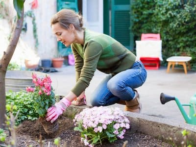 Woman planting flowers in yard