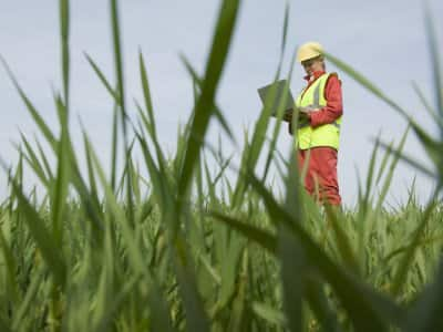 woman in yellow vest holding clipboard surveys grassy land