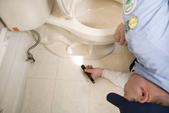 toilet leak