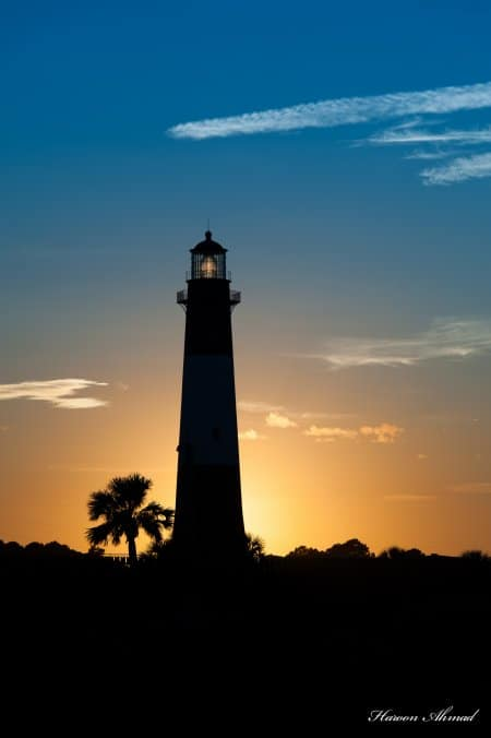 palm tree light house silhouette at sunset