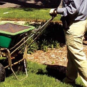 Fall aeration and overseeding helps to fill in bare spots to provide a thick green lawn, says Haughtaling. (Photo courtesy of Swingle Lawn, Tree and Landscape Care)