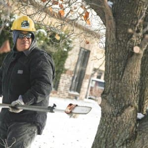 Tree trim man chainsaw danger cut snow service