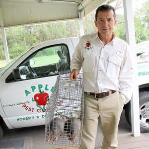 pest control tech removing armadillos
