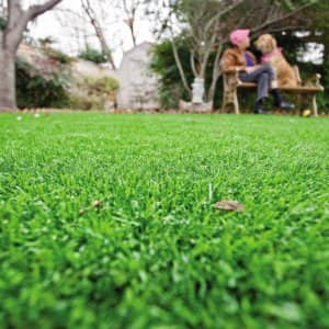Green grass with a man and dog sitting in s chair in the distance