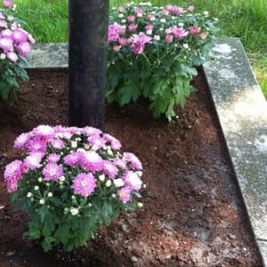 After planting your new flowers, mulch the garden with two to three inches of fresh mulch, says Hudnall. (Photo courtesy of Angie's List member Christina W. of Detroit)