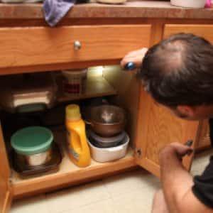 man inspecting kitchen for roaches (Photo by Photo by John Zawacki  )