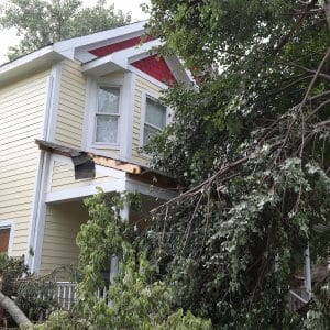 tree falls on house during storm (Photo by Steve C. Mitchell)