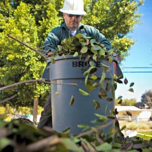 man putting leavs in a trash bin