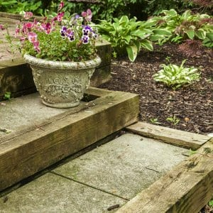 Use potted plants to improve your backyard landscaping. (Photo by Katelin Kinney)