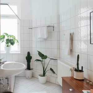 A minimalist white bathroom (Photo by Westend61 via Getty Images)