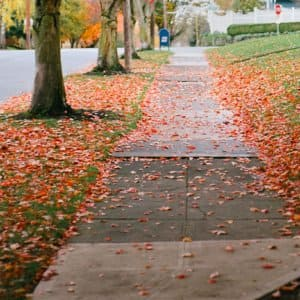 Concrete sidewalk outside a home in neighborhood with orange leaves on the grass