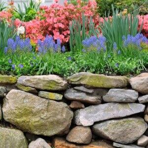 Garden of flowers with stone retaining wall (Photo by Jorge Salcedo / Shutterstock.com)