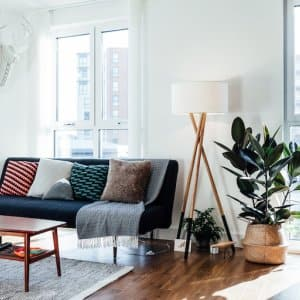 living room interior with modern furniture, large windows, and a rubber plant in corner (Photo by  Oscar Wong/Moment via Getty Images)