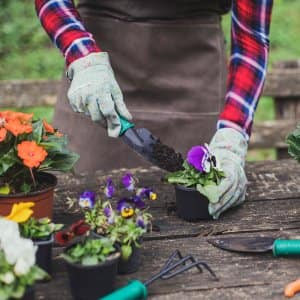 gardening summer flowers outdoor table  (Photo by LukaTDB / E+ via Getty Images)