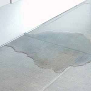 Puddle of water in kitchen (Photo by cunaplus / Shutterstock.com)