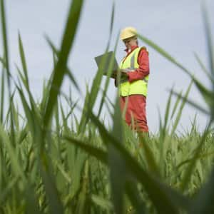 woman in yellow vest holding clipboard surveys grassy land (Photo by © Henry Arden/Cultura/Getty Images)