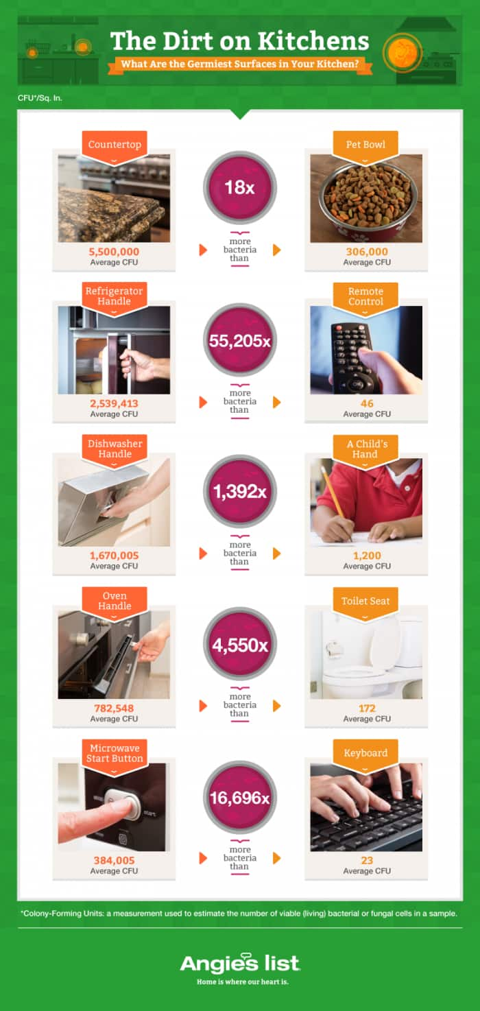 graphic showing number of germs on different home surfaces