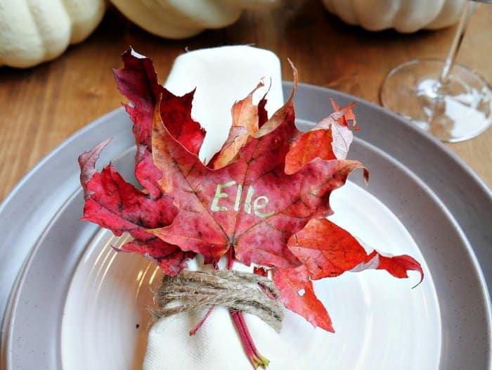 Leaf napkin ring materials