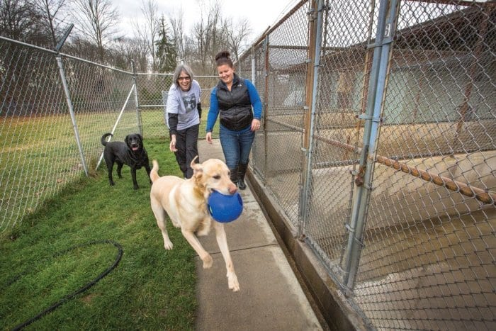 Teresa Daniels and Lisa Johnson of Country Lane Kennel in Pendleton, Indiana playing with Labradors.