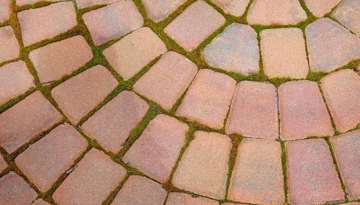 bricks with moss growing between