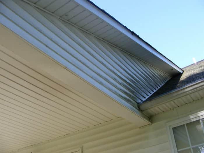 white vinyl siding with mildew near roof