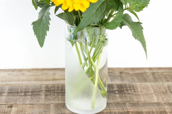 closeup of etched glass vase