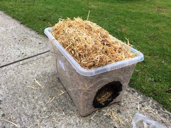 making DIY feral cat shelter