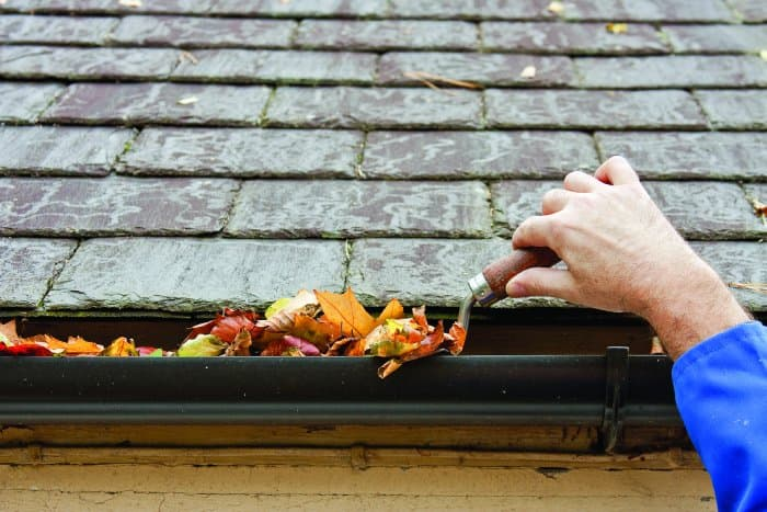 scooping leaves out of a gutter