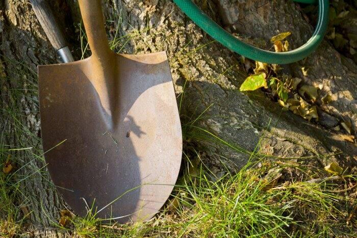 gardening shovel and hose