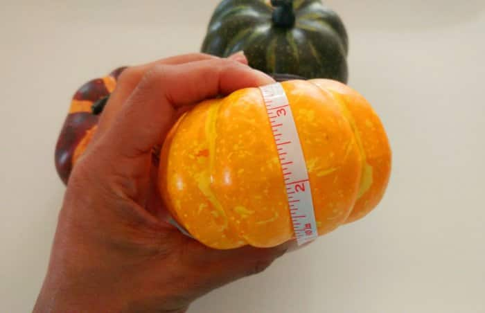 measuring craft pumpkins with tape measure
