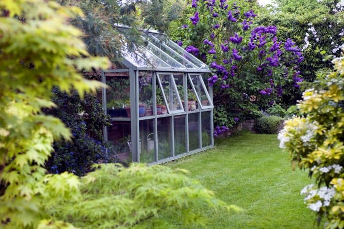 Wedge a greenhouse in between larger plants. (Photo courtesy of Getty Images/Cultura RF)