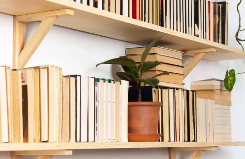 wall book shelves  (Photo by Dejan_Dundjerski/iStock/Getty Images Plus via Getty Images)