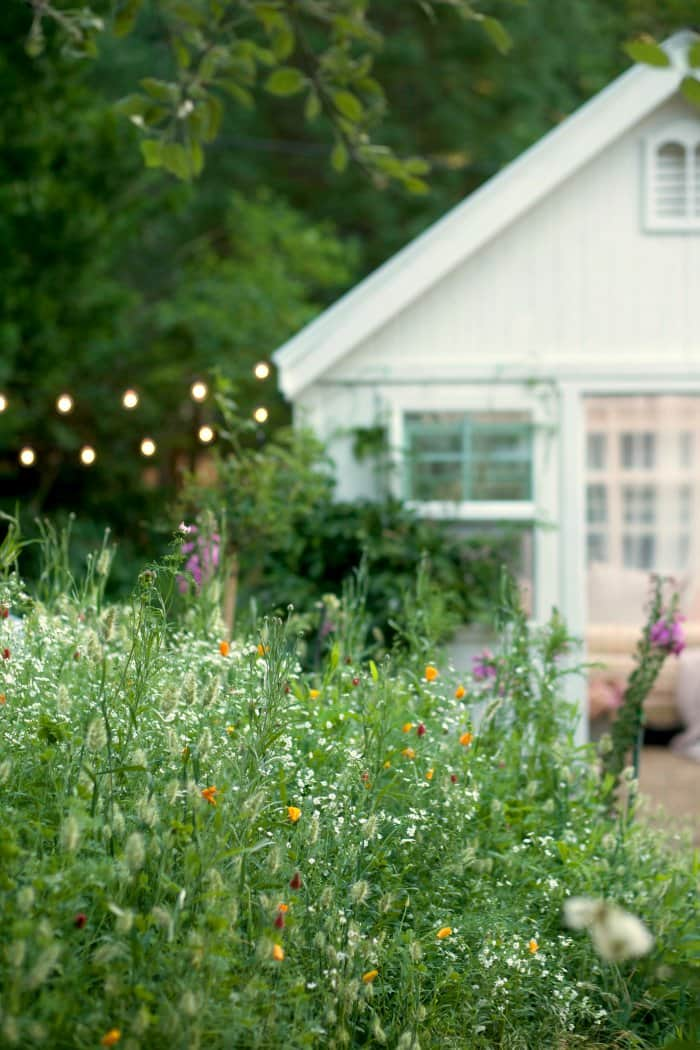 Wildflowers add plenty of natural beauty. (Photo courtesy of Courtney Allison/The French Country Cottage)