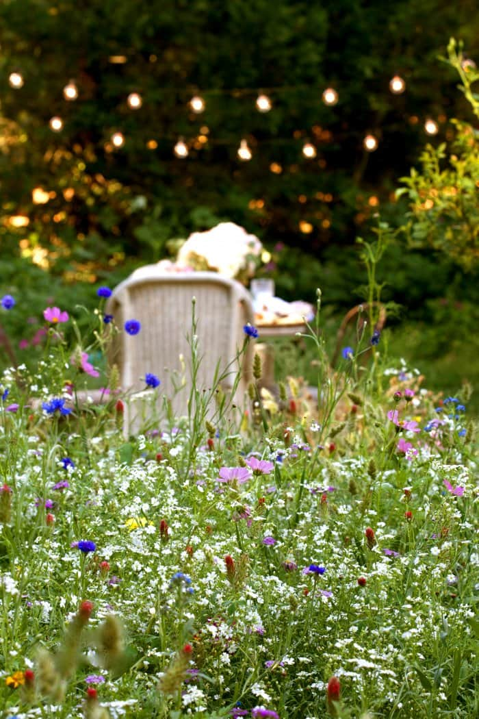 The variety of wildflowers add more color. (Photo courtesy of Courtney Allison/The French Country Cottage)