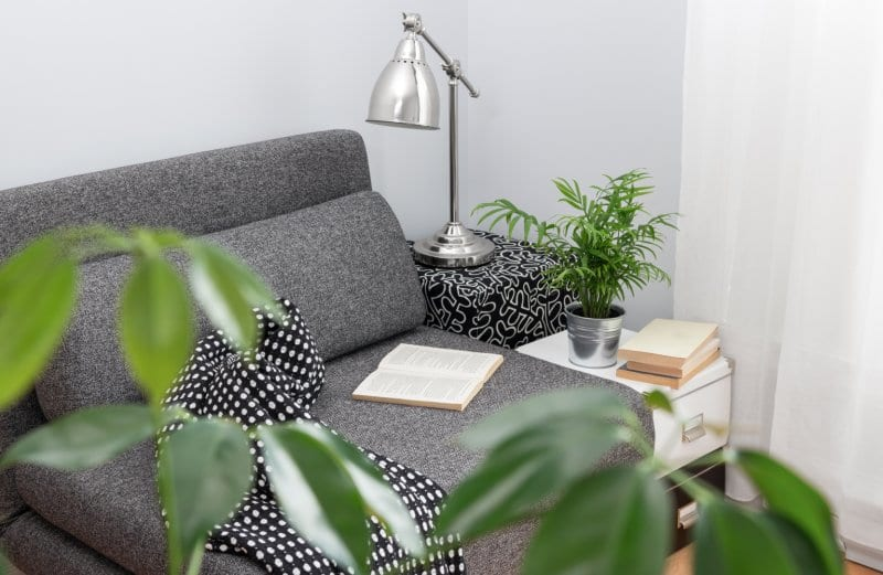 bedroom corner with sofa  (Photo by Studio Light and Shade/iStock via Getty Images)