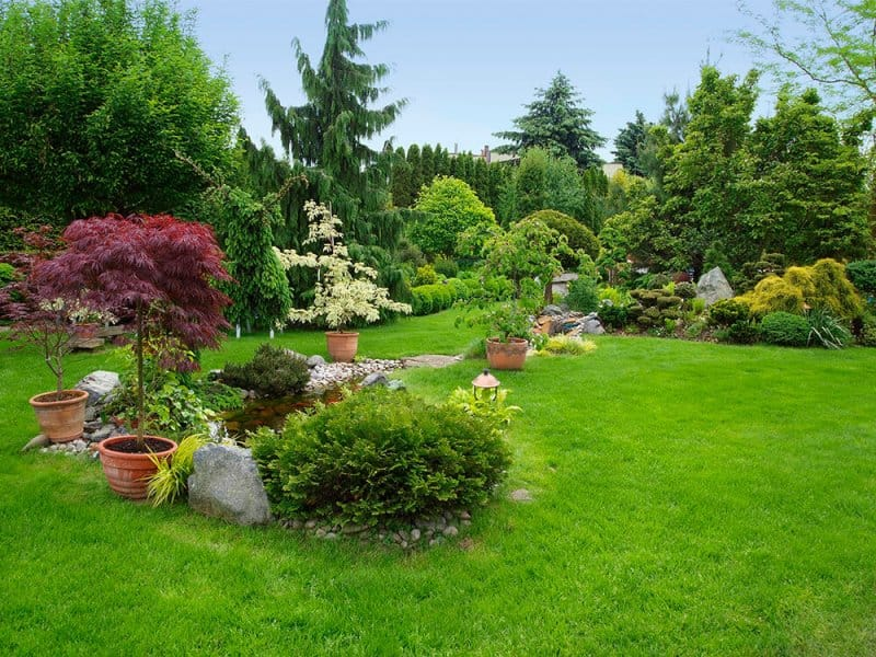 Beautifully landscaped yard (Photo by  domin_domin/E+ via Getty Images)