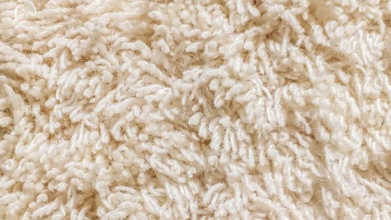 cream cut carpet pile closeup on texture