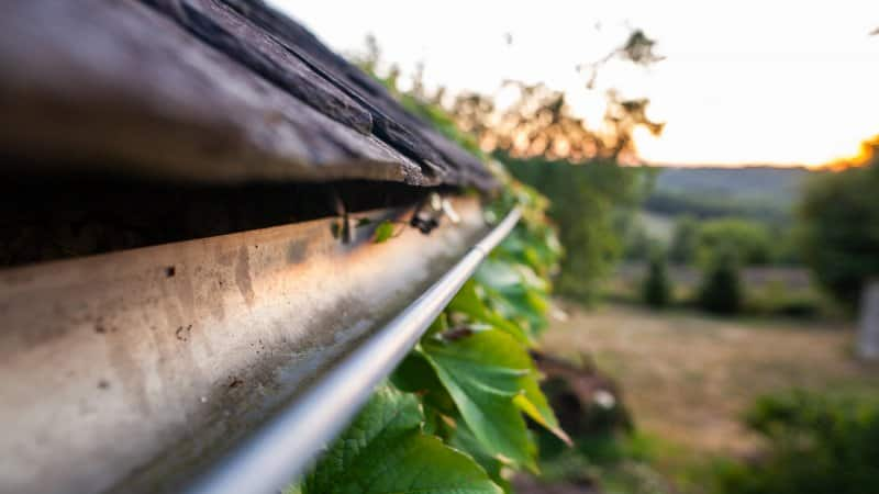 A close-up of house's gutter (Photo by Capelle.r/Moment via Getty Images)