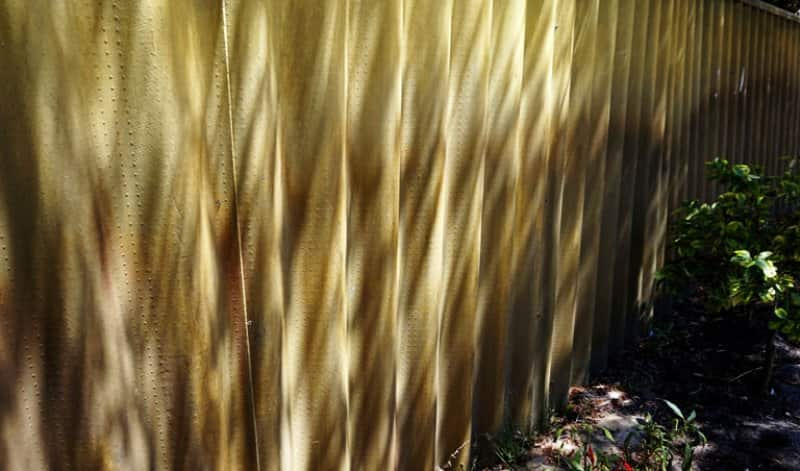 A sunlit corrugated fence in a garden (Photo by Pang Zim Yee / EyeEm/EyeEm via GettyImages)