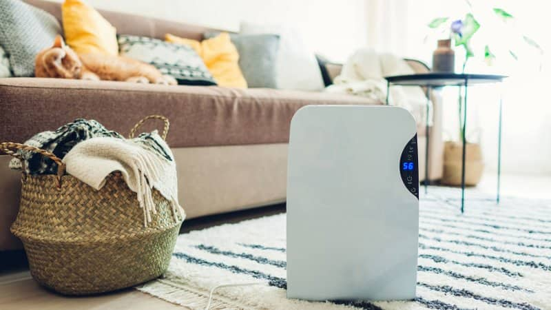 A dehumidifier with a touch panel working in living room (Photo by Maryviolet/iStock / Getty Images Plus via Getty Images)